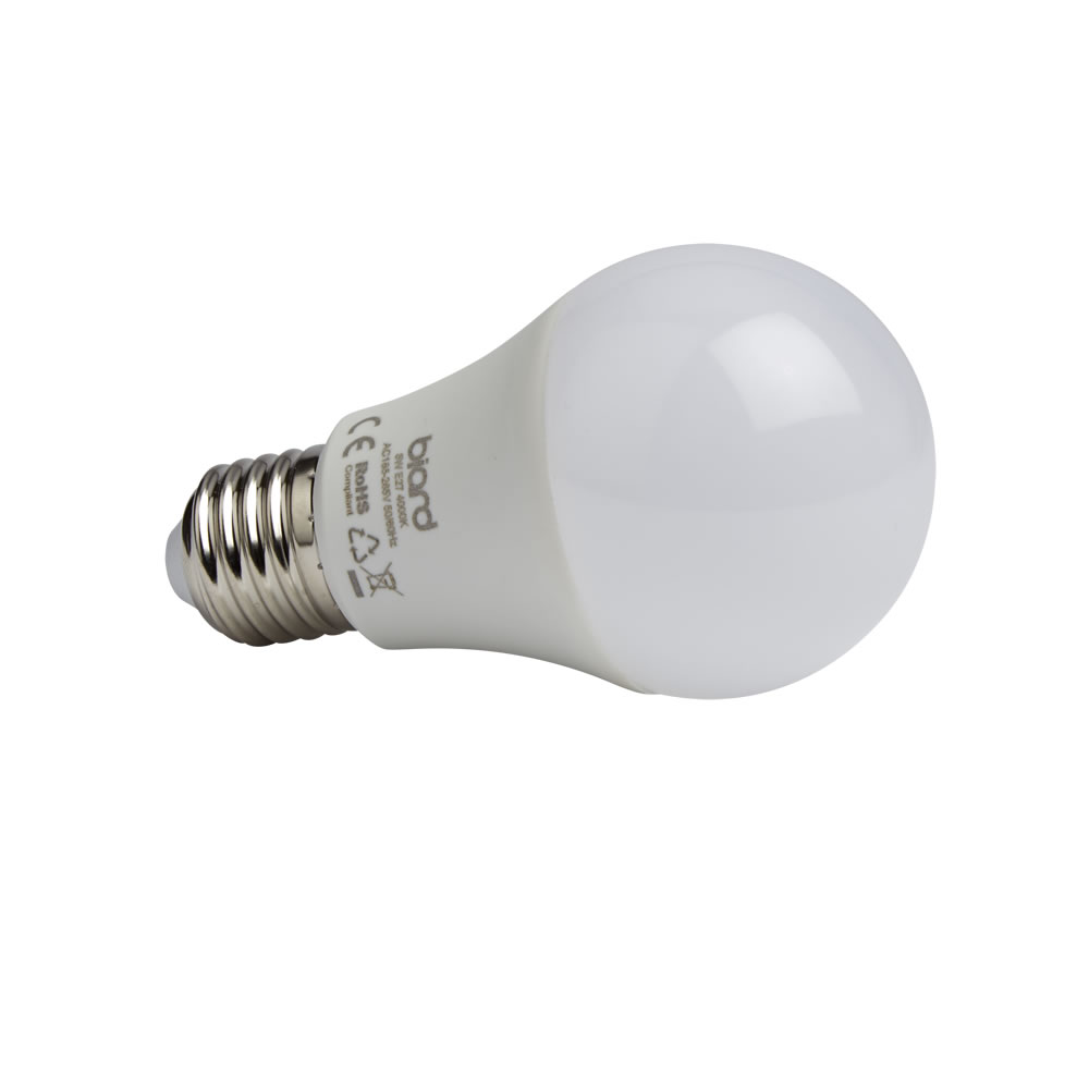Biard Ampoule Led E27 5W - Lot de 6