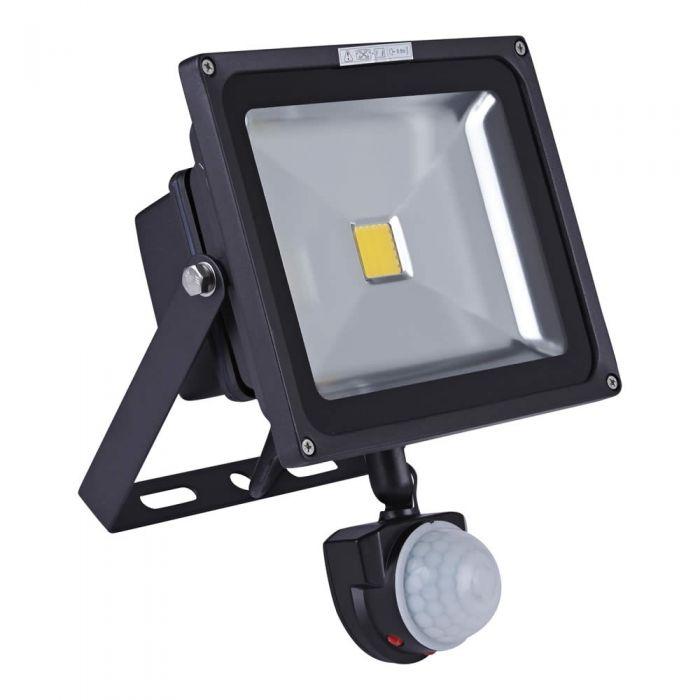 Biard Projecteur LED 30 Watts avec détecteur