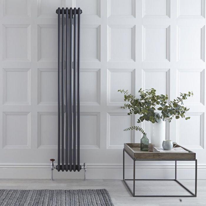 Radiateur Vertical Style Fonte Anthracite Windsor 180cm x 29.3cm x 10cm 1169 Watts