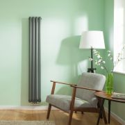 Radiateur Design Vertical Raccordement Central Anthracite Vitality Caldae 160cm x 23,6cm x 7,8cm 858 Watts