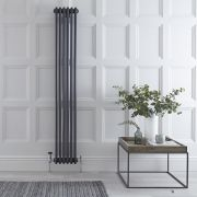 Radiateur Vertical Style Fonte Anthracite Windsor 180cm x 29.3cm x 10cm 1169 Watts