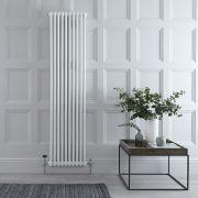 Radiateur Vertical Style Fonte Blanc Windsor 180cm x 47cm x 7cm 1556 Watts
