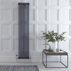 Radiateur Vertical Style Fonte Anthracite Windsor 180cm x 36cm x 10cm 1737 Watts